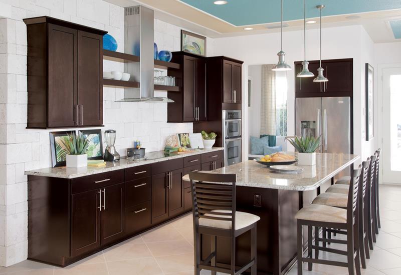 21 Dark Cabinet Kitchen Designs-21