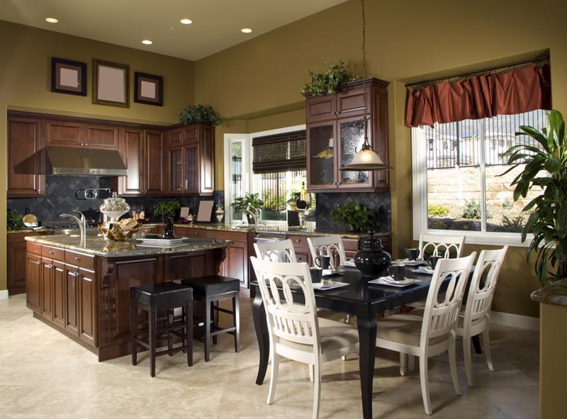 21 Dark Cabinet Kitchen Designs-9
