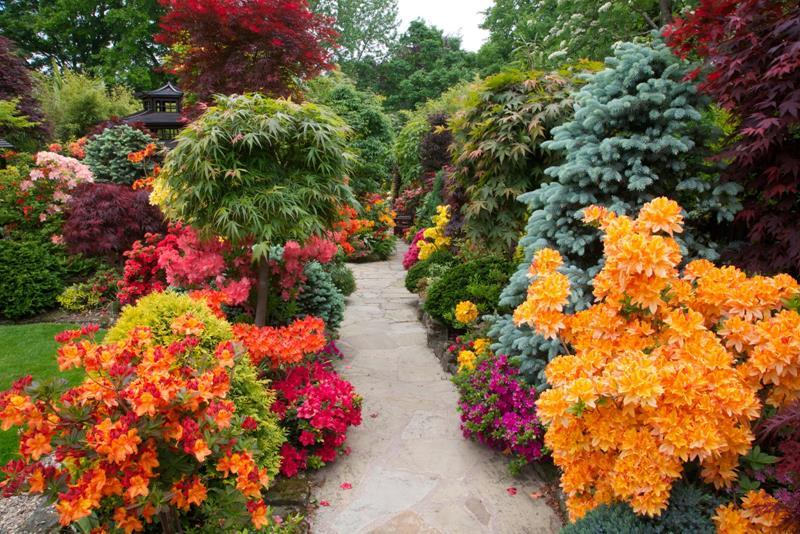 18 Inspirational and Beautiful Backyard Gardens-15