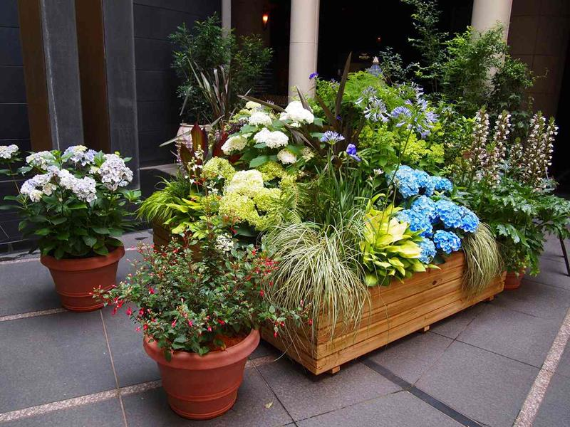 21 Beautiful Flower Box Design Ideas-21