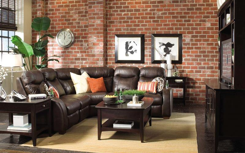 22 Living Rooms With Leather Furniture-2