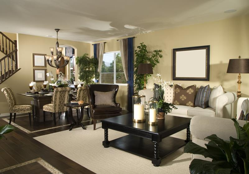 25 Living Rooms With Hardwood Floors-17