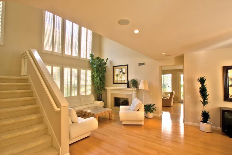 25 Living Rooms With Hardwood Floors-4