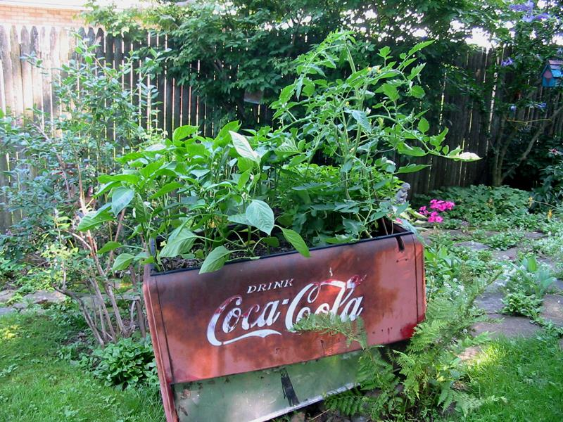 16 Amazing Ways to Enhance Your Garden with Recycled Items-11
