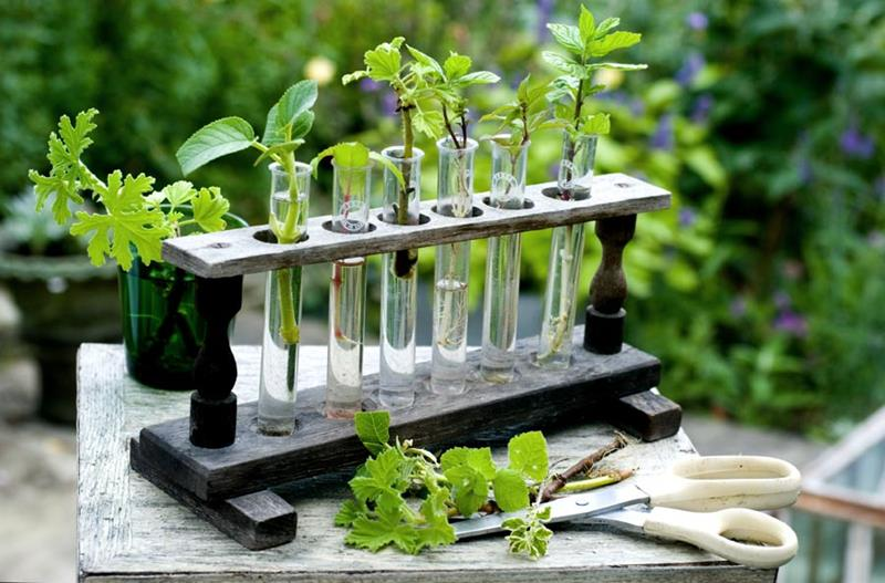 16 Amazing Ways to Enhance Your Garden with Recycled Items-6