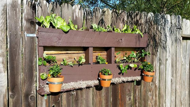 17 Charming Fence Planter Ideas for Your Home-5