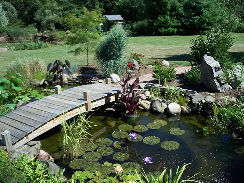 18 Wonderful Ideas for a Garden Pond-11
