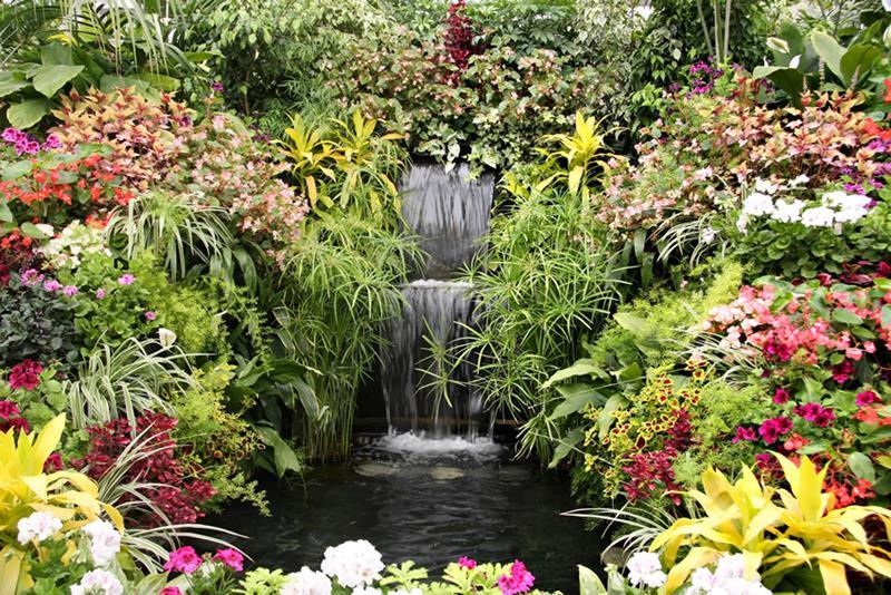 18 Wonderful Ideas for a Garden Pond-15
