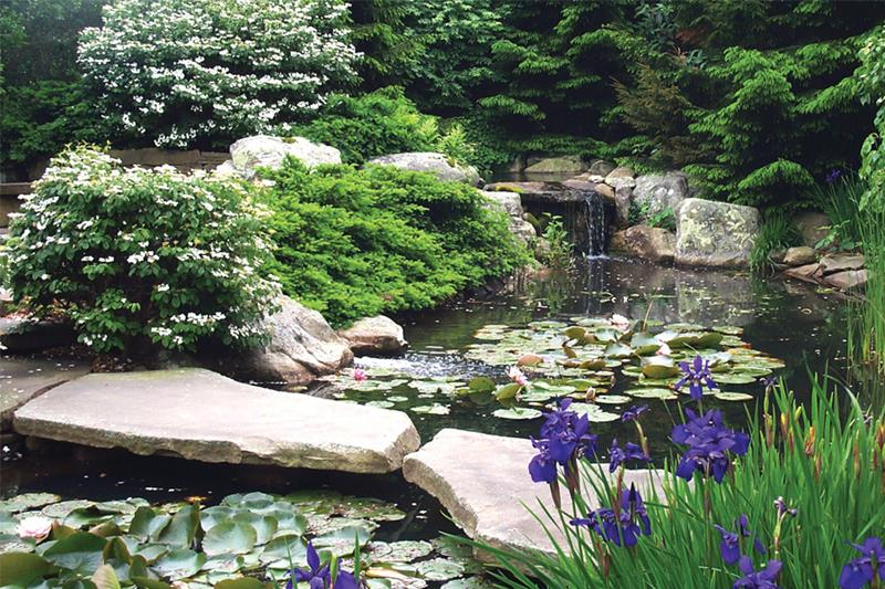 18 Wonderful Ideas for a Garden Pond-2