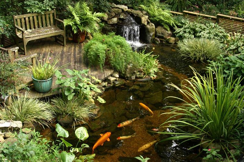 18 Wonderful Ideas for a Garden Pond-4
