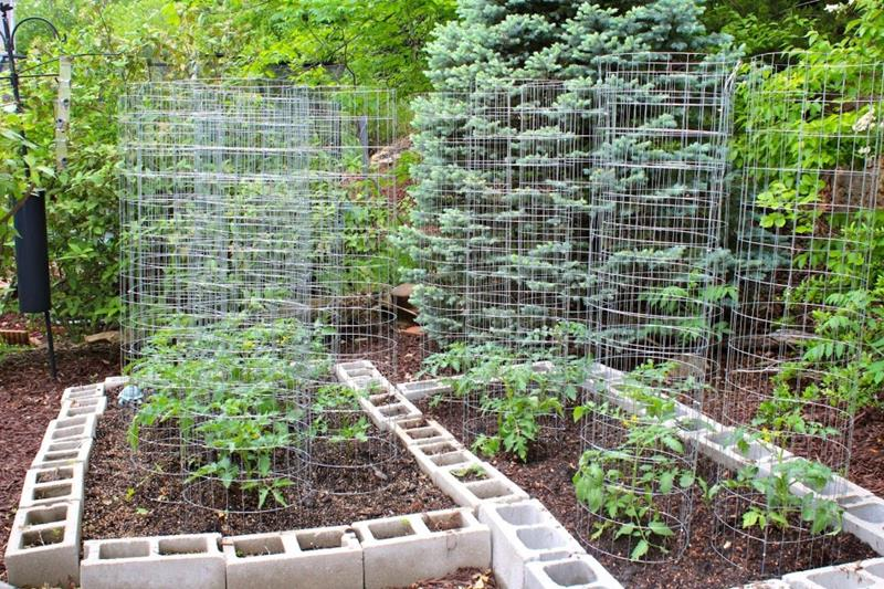 24 Awesome Ideas for Backyard Vegetable Gardens - Page 3 of 5