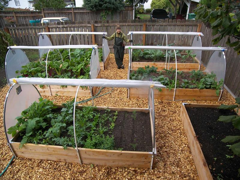 24 Awesome Ideas for Backyard Vegetable Gardens-4