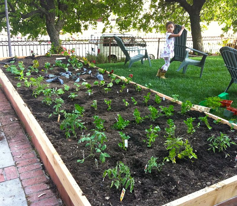 24 Awesome Ideas For Backyard Vegetable Gardens