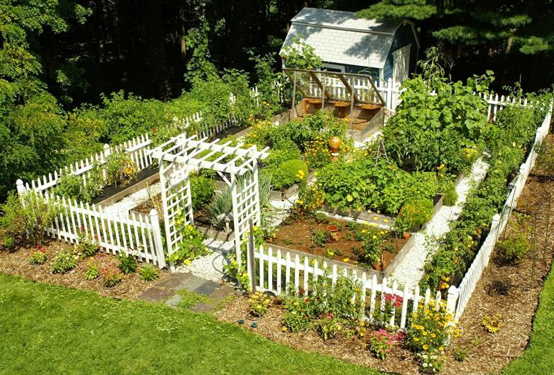 24 Awesome Ideas for Backyard Vegetable Gardens-title