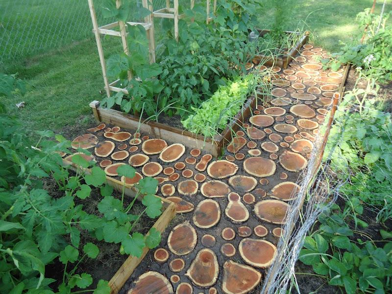 25 Beautiful Ideas for Garden Paths-24