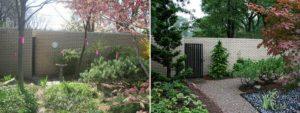 20 Before and After Pictures of Backyard Landscaping